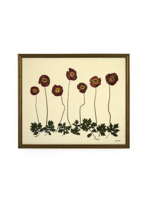 Poppy Wall Art Print